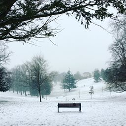 Beechwood Park snow March 2018